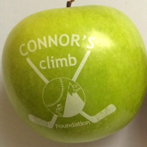 Funtoeatfruit.com Connors Climb #suicideprevention