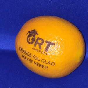 ORT America Fun to Eat Fruit Orange