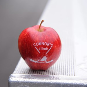 Fun to Eat Fruit Sponsors Connors Climb 5k Suicide Prevention