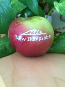 NH Tourism #NHMADE Fun to Eat Fruit