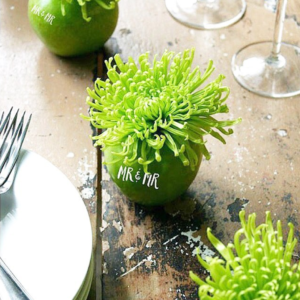 Elegant Green on Green Apple Fun to Eat Fruit table decor