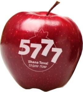 Fun to Eat Fruit Rosh Hashanah Apple C 5777