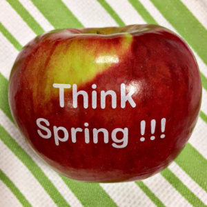 Spring Fun to Eat Fruit Apples