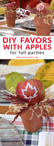 DIY apple favors for fall parties / Find out how to create easy DIY apple favors for tailgating party decorations / Click to see how to customize apples for fall decor and party favors / as seen on Fun to Eat Fruit with styling by Giggle Living www.funtoeatfruit.com