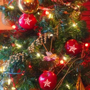 Deck the halls with Fun to Eat Fruit star apples for Christmas tree. www.funtoeatfruit.com