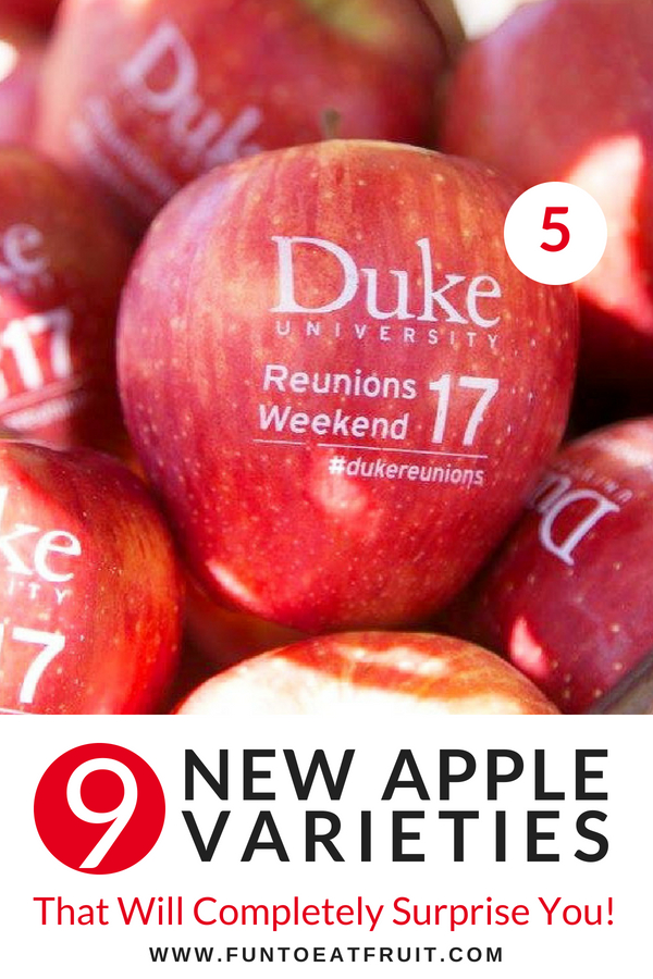 Variety #5: Reunion Weekend snacks and favors from Fun to Eat Fruit! We imprint your custom message onto healthy apples and it's completely edible. See the other 8 new varieties of our apples and how to use them at your events! www.funtoeatfruit.com #favors #reunions #alumnievents #alumni #tailgating #homecoming #partyideas #apples #personalized #fruit #pictureduke