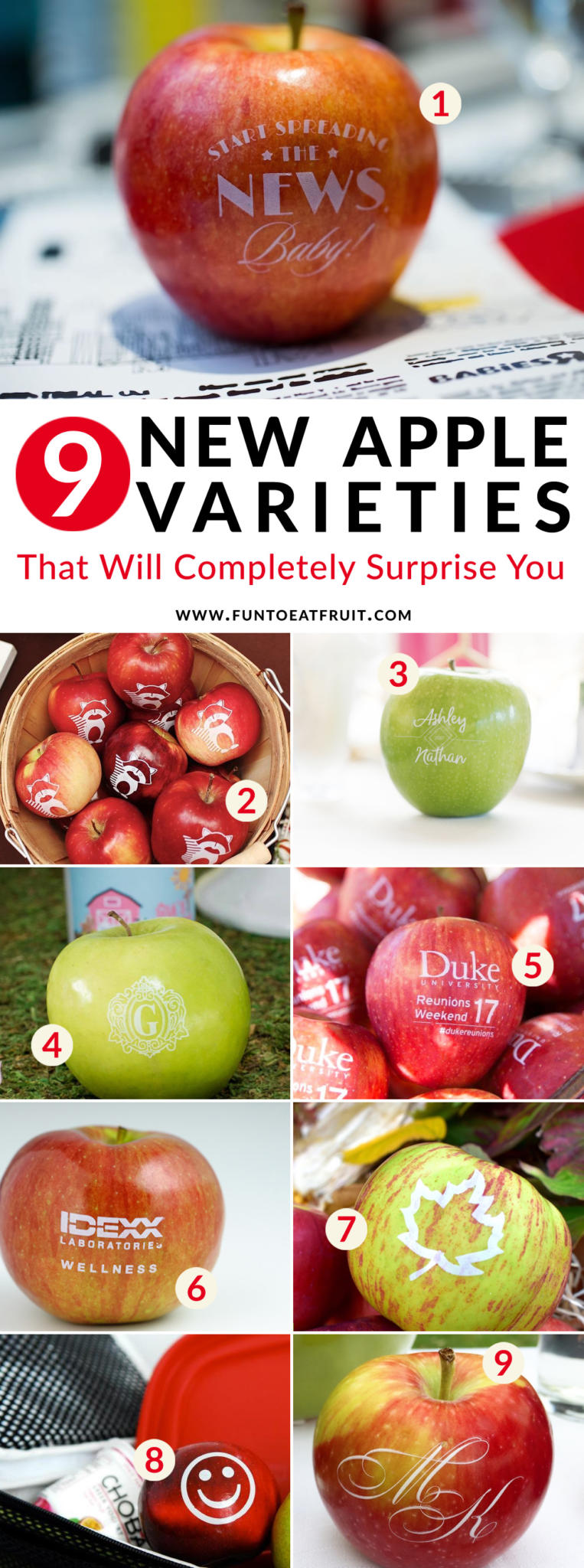 Have you heard? There's 9 new varieties of apples that will completely surprise you in this apple variety chart. Click to see what each variety of apple is along with unique ways to use apples for parties. As seen on Fun to Eat Fruit www.funtoeatfruit.com #partyideas #weddingideas #favors #ediblefavors #apples #swag #personalized #backtoschool #kidsparties #fallweddings #reunions