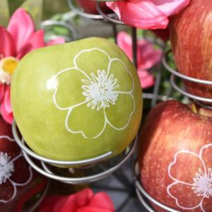 Personalized Fun to Eat Fruit apples imprinted with edible flowers are the perfect favors or snacks for your garden party! Click for more creative garden party ideas from stylist GiggleLiving.com. www.funtoeatfruit.com #garden #partyideas #spring #summer #gardenparty #ediblefavors #ediblepartyfavors
