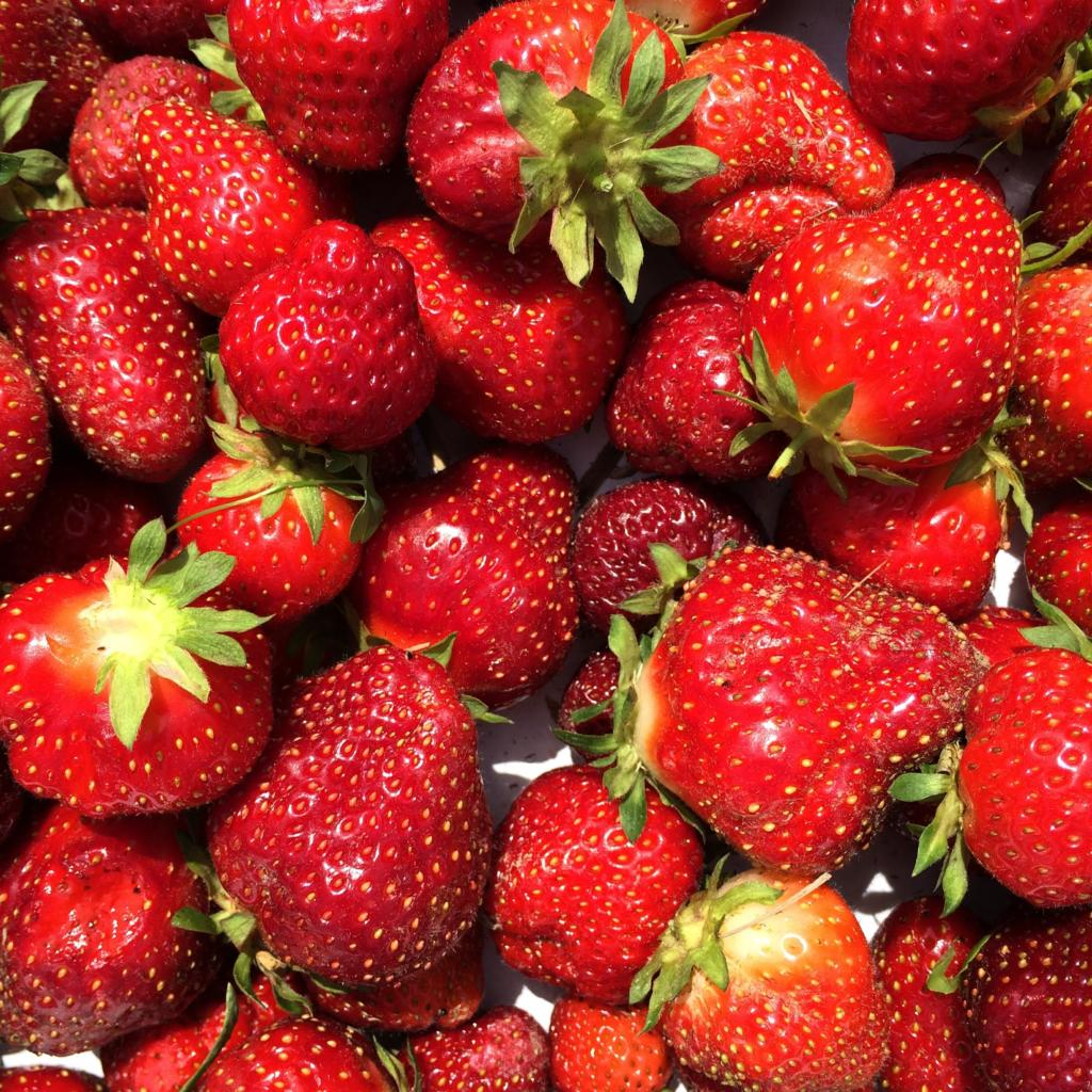 Summer fun starts with fresh strawberries. Check out our 3 easy, favorite recipes for entertaining friends! www.funtoeatfruit.com #strawberries #summerrecipes #fruit #strawberryrecipes